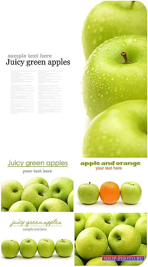 Свежие яблоки / Fresh apples - Stock photo