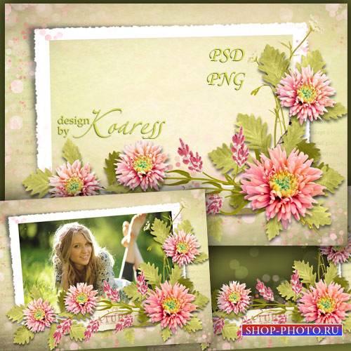 Женская рамка для фотошопа с летними цветами - Цветочная романтика