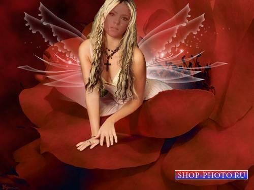 Шаблон psd - Красивая фея на лепестке розы