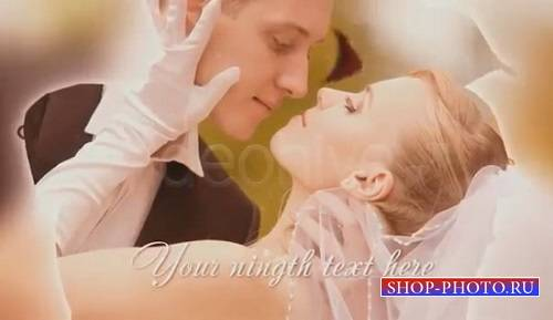 Проект videohive - Wedding Rose