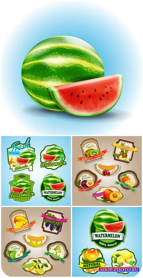 Продуктовые этикетки в векторе, арбуз, ананас, киви, абрикос / Food labels  ...