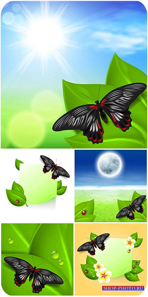 Природные векторные фоны с бабочками / Natural vector backgrounds with butt ...