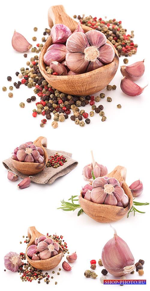 Чеснок, специи / Garlic and spices - Stock Photo