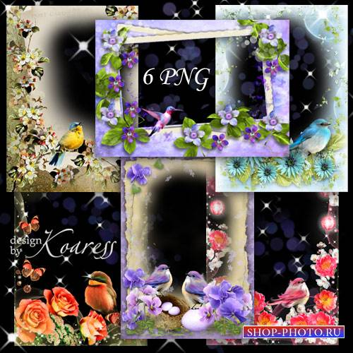 Набор романтических png фоторамок - Птичье пение в день весенний