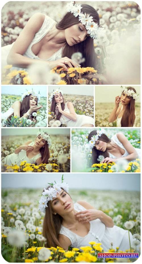 Девушка в поле с одуванчиками / Girl in a field with dandelions - Stock pho ...