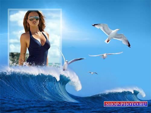Морские чайки - Рамка psd