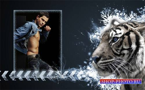 Рамка для фотомонтажа - Красивый тигр