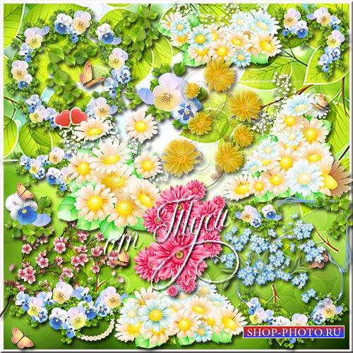 Клипарт - Летние цветы