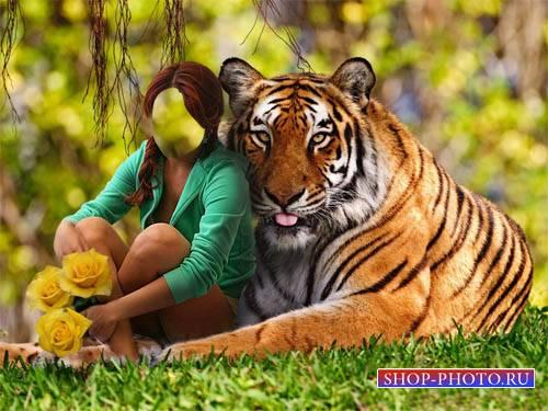 Шаблон для фотомонтажа - С тигром и цветами на поляне