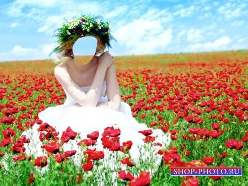 Шаблон для фото - Яркая фотосессия в маковом поле