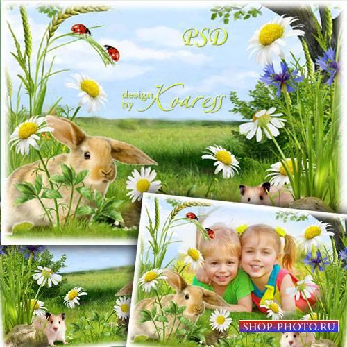 Детская фоторамка с луговыми цветами и пушистыми обитателями полей - Веселы ...