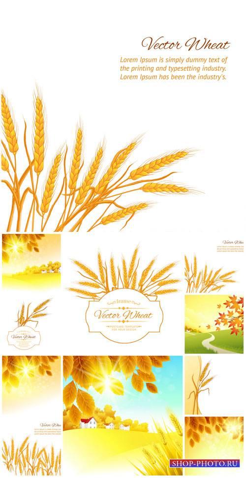 Природа в векторе, пейзажи, колоски / Vector nature, landscapes, spikelets