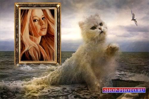 Рамка для фотомонтажа - Маленький котенок из воды