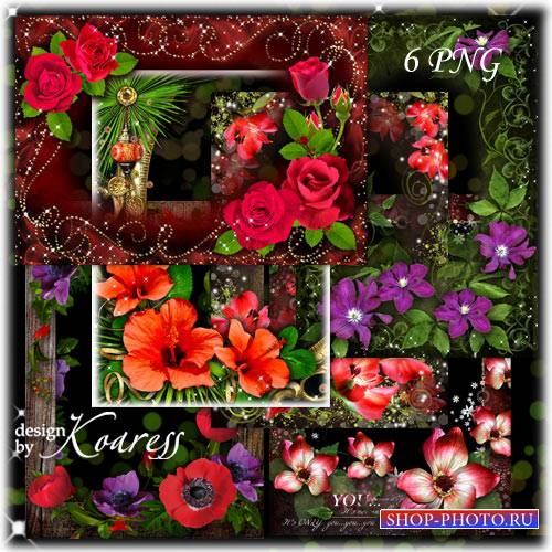 Набор цветочных png рамок - Сладкий лета поцелуй