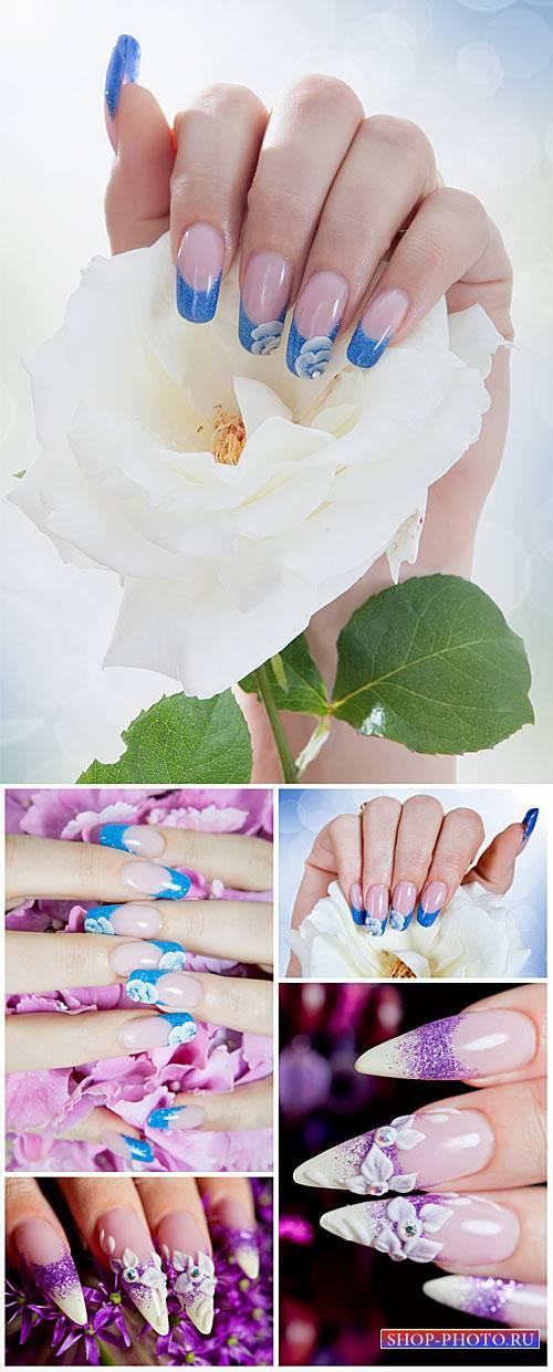 Красивый маникюр, женские руки, розы / Beautiful manicured, female hands, r ...