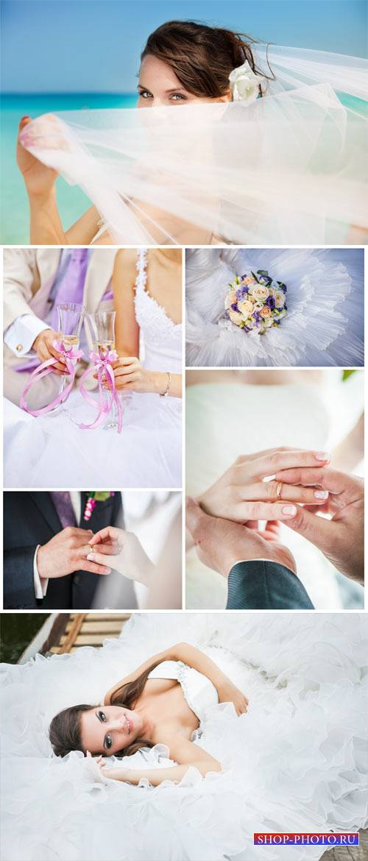 Свадебный коллаж, жених и невеста, бракосочетание / Wedding collage - Stock ...