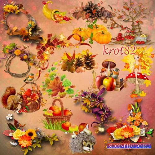 Подборка осеннего клипарта на прозрачном фоне – Цветы, листья, корзинка, яб ...