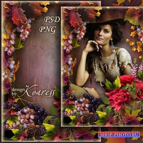 Романтическая фоторамка с красными розами и виноградными гроздьями - Осенни ...