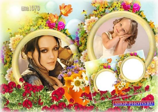 Рамка для фотошопа - В мире летних цветов
