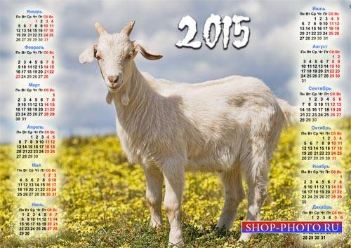 Календарь - Коза на поле