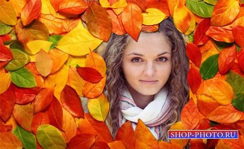 Фоторамка - Осенние листья