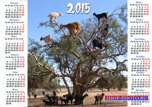 Календарь на 2015 год - Ее год, ей можно
