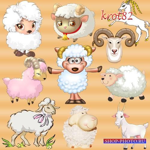 Рисованный клипарт символ 2015 года – Овца, коза, баран