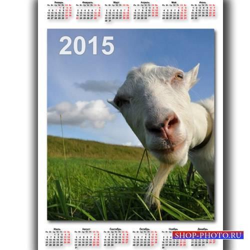 Календарь 2015 - Задумчивая коза