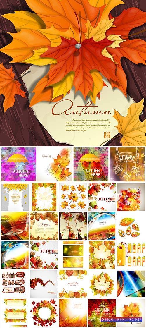 Осенняя векторная коллекция, фоны / Autumn vector collection, backgrounds