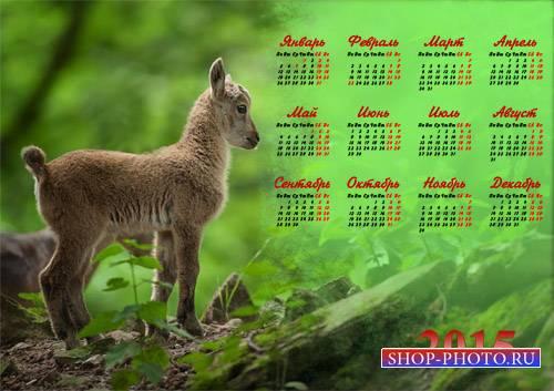 Календарь 2015 - Маленький козленок