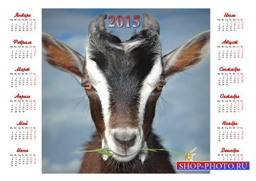 Календарь - Коза с ромашкой