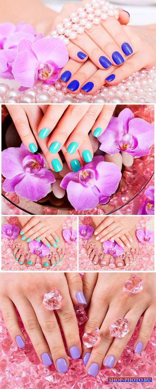Manicure and pedicure, female hands # 2 - Stock Photo