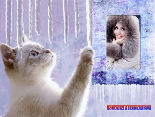 Рамка для фото - Маленький котик и сосульки