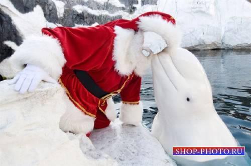 Шаблон psd мужской - Дедушка мороз и северный дельфин
