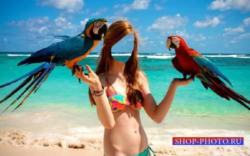 Шаблон для фото - На море и 2 больших попугая