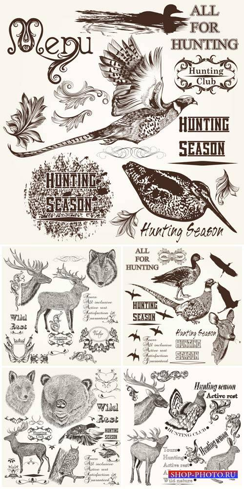 Animals and birds in vector, design decorative elements