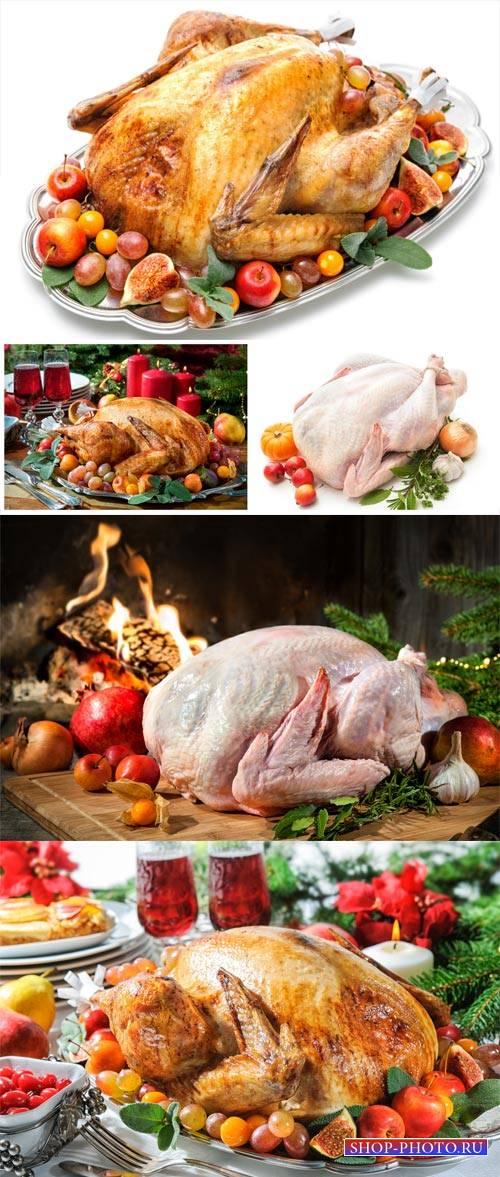 Festive Christmas food, baked chicken - stock photos