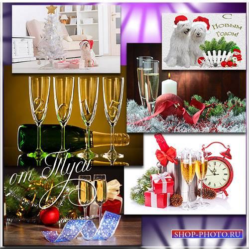 Подарков новогодний карнавал – будет рад и стар, и мал