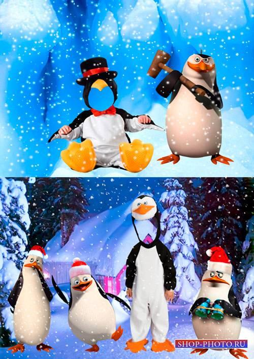 Шаблоны для фотошопа  - Маленькие пингвины из мадагаскара