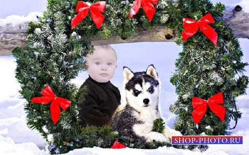 Детский шаблон - Ребенок рядом с маленькой хаски под новогодним венком