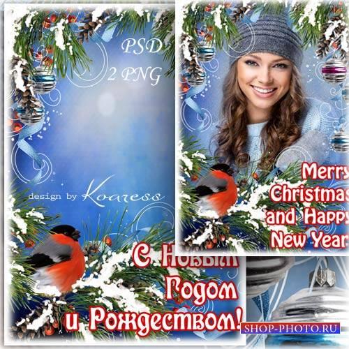 Праздничная фоторамка со снегирем - С Новым Годом и Рождеством