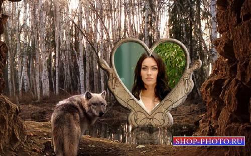 Рамка для фотошоп - Волк в лесу