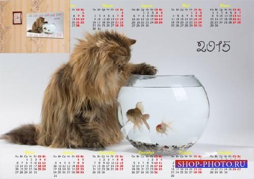 Календарь 2015 - Котенок над рыбками
