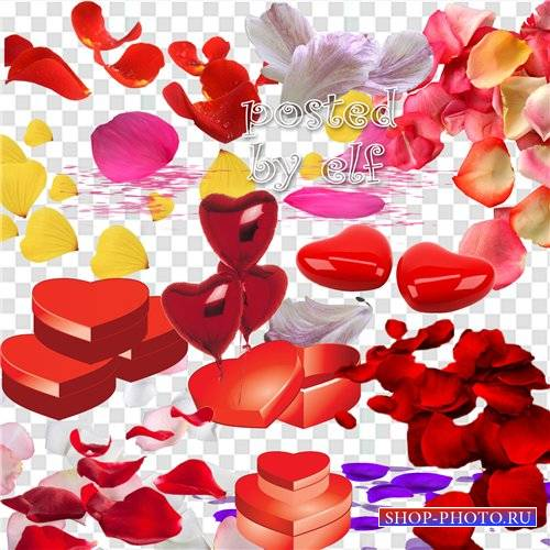 Лепестки цветов и сердечки - Клипарт без фона