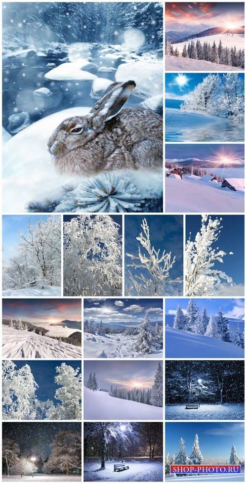 Winter, nature, landscapes - stock photos