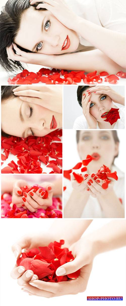 Beautiful woman and rose petals - Stock Photo