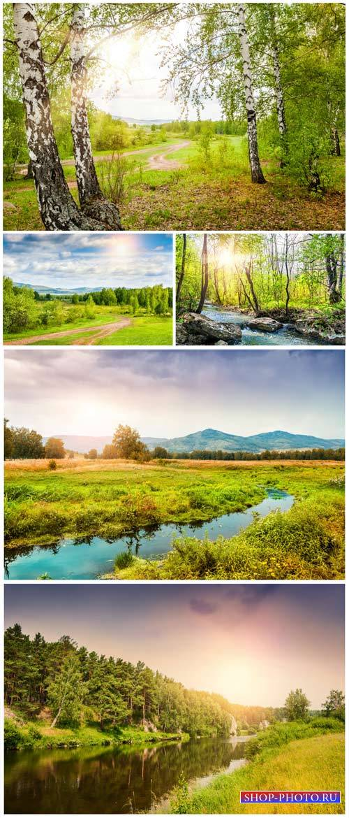 Beautiful landscapes, birch grove, river - stock photos