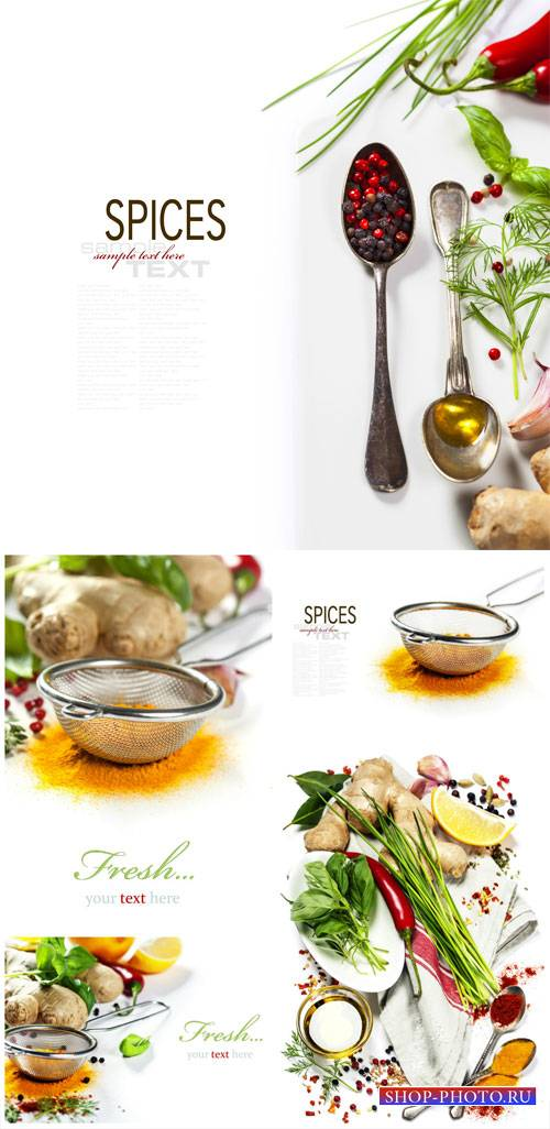 Spices, white background for your text - stock photos