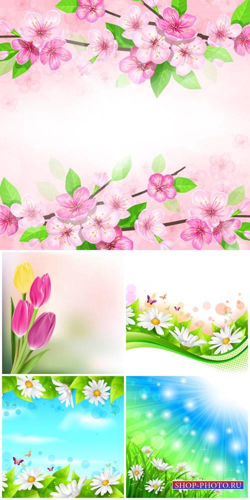 Flowers vector, daisies, tulips, spring flowers