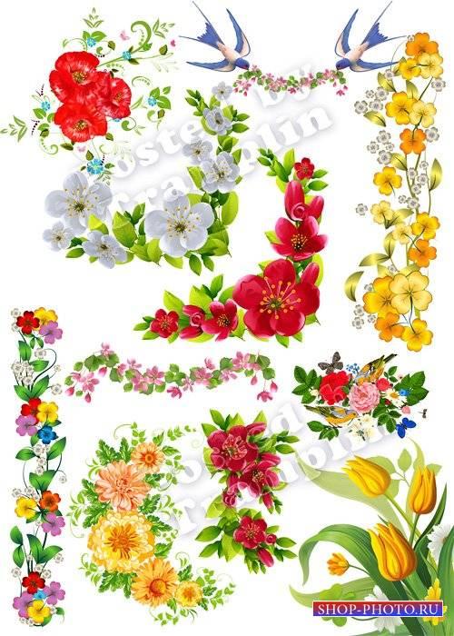 Цветочные композиции, уголки, орнамент на прозрачном фоне